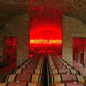 Im Weinkeller © Alessandro Moggi