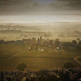 Blick vom Weinberg auf die Weingärten © Domaine Méo-Camuzet