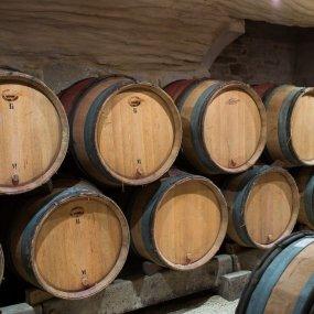 Der Weinkeller © Michel Joly