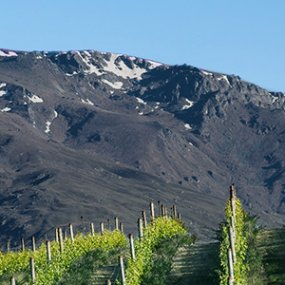 Am Fuße des Mount Riley © Cloudy Bay Vineyards