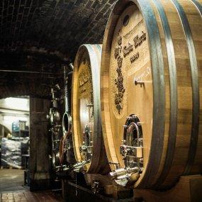 Im Weinkeller © Florian Schulte