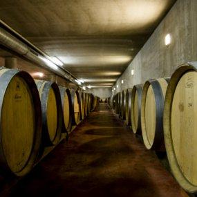 Weinkellerei in Sooß © Weingut Fischer Christian