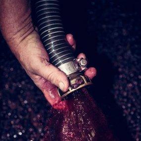 Bei der Weinverarbeitung © Domaine Arlaud Pere et Fils