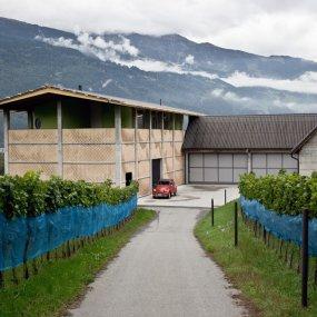 Weingut Gantenbein © Weingut Gantenbein