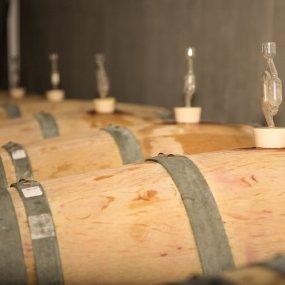 Weinfässer © 4G Wine Estate
