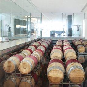 Weinfässer Weingut Hillinger © Weingut Hillinger Leo