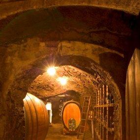 Holzfässer für den Sauvignon Blanc und die Chardonnay Reserve © Weingut Högl Josef