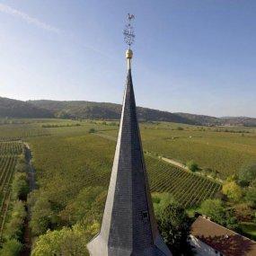 Blick auf die Weingärten © Felix Bergner