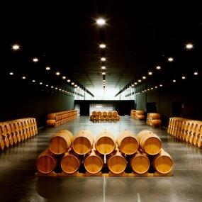Weinfässer Lager © Bodegas Emilio Moro