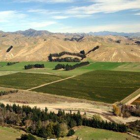 Über den Weingärten © Mount Nelson