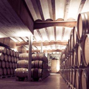 Der Weinkeller © Bodega Miguel Merino