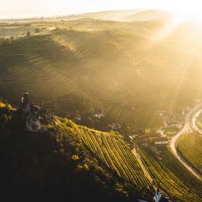 Über den Weingärten © Über den Weingärten