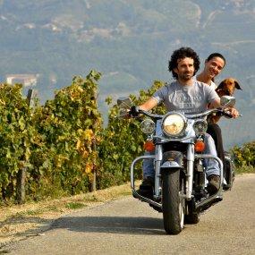 Stefano Perrone und sein Frau unterwegs in den Weinbergen © Az. Agr. Perrone