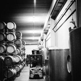 Weinlager © Weingut Schwarz