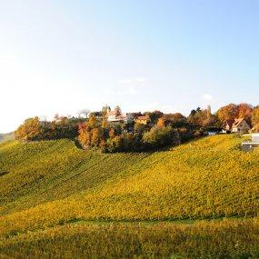 Zieregg Herbststimmung © Weingut Tement Manfred