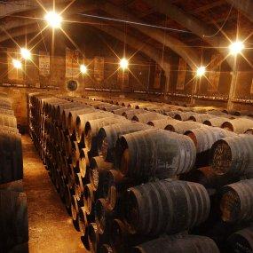 Im Weinkeller © Bodegas Toro Albalá