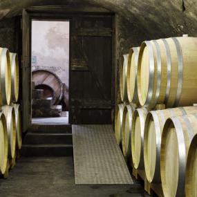 Im Weinkeller © Weingut Lichtenberger González