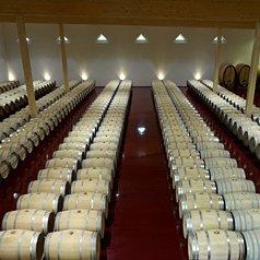 Weinfässer des Weingutes T.FX.T © Weingut T.FX.T