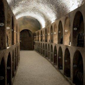 Der Weinkeller © Photographer Julien claessens & Philippe Galowich